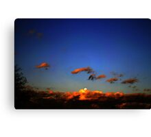 Sonoran Desert Dawn Canvas Print