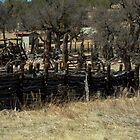 Rustic Log Fence by ptosis