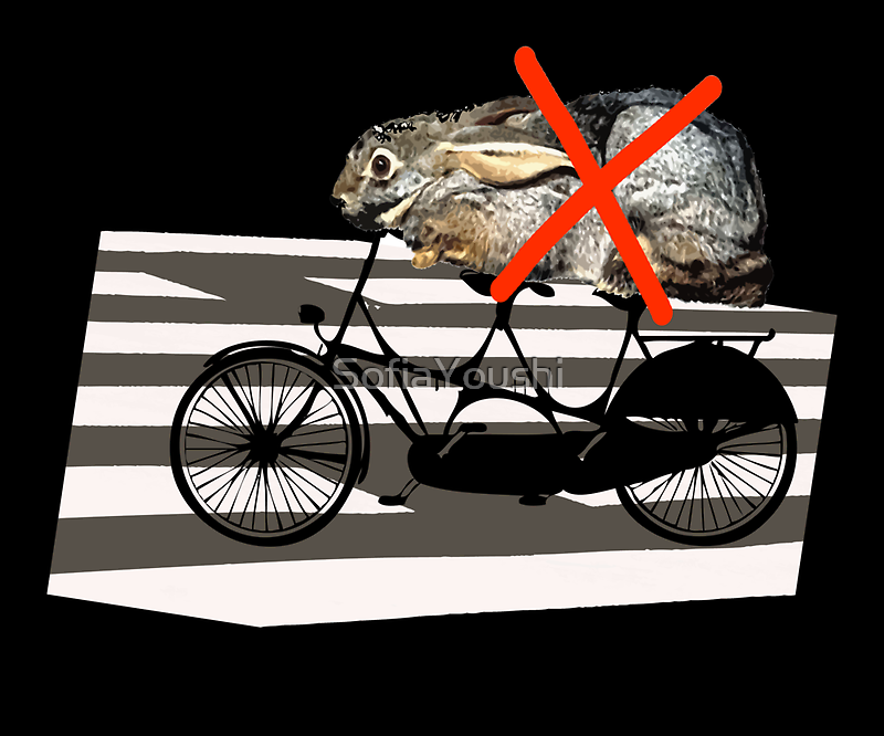 NO RABBITS ON TANDEM BICYCLE by SofiaYoushi