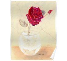Red Rose in Vase Poster