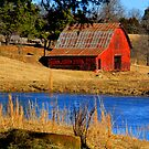 Gorgeous Red Barn, and Cobalt Blue Water. by NatureGreeting Cards ©ccwri
