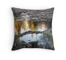 Rocksnake Throw Pillow
