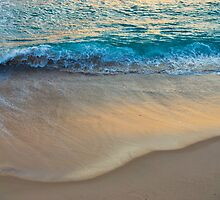 Tumble on Golden Sands by PhotoJoJo