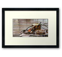 Banjolele Framed Print