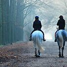 On a cold day in December two ladies rode out on their horse ... by jchanders