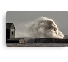 Roaring Wave Canvas Print