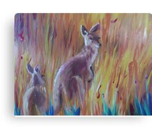 Kangaroos in Long Grass Canvas Print