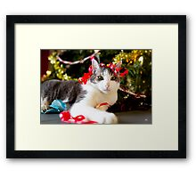 Christmas is for everyone! Framed Print