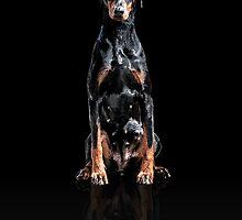 Dobermann - Digital Art by nhvexelarts
