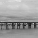 Perquimans River Bridge In Black and White by WeeZie