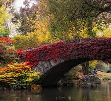 Gapstow Bridge in Autumn by Jessica Jenney