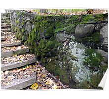 Mossy Wall Detail Poster