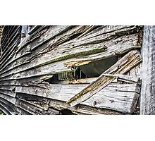 old wood Photographic Print