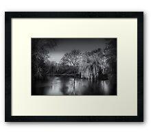 Moonlit Willow Framed Print