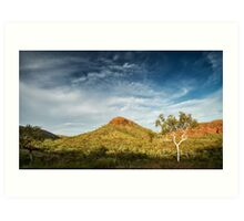 The Beauty of the Outback Art Print