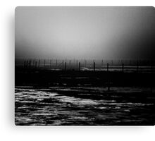 wire and boundaries thereof Canvas Print