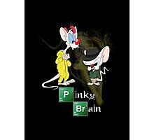 Pinky & The Brain Breaking Bad Photographic Print