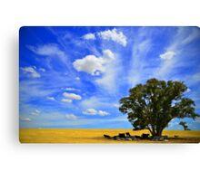Australian Farm Canvas Print