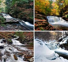 Conestoga Falls In Every Season by Gene Walls
