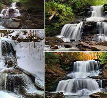 Tuscarora Falls In Every Season by Gene Walls