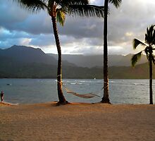Hammock At Hanalei Bay by James Eddy