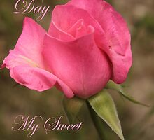 Happy Valentines Day My Sweet Love by Stephen Thomas