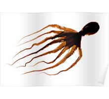 Octopus Silhoette  Poster