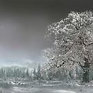 Sacred Tree by Igor Zenin