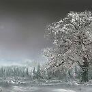 Sacred Tree by Igor Zenin