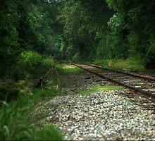 Tracks by Patito49