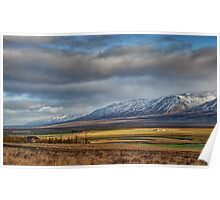 Icelandic Farmland Poster