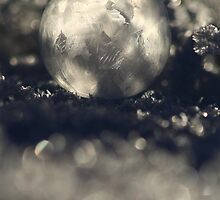 20.1.2014: Frozen Soap Bubble II by Petri Volanen