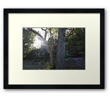 Rocks Sydney Framed Print