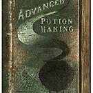 Libatius Borage's Book replica. by Emiliano Morciano