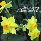 Daffodils for Love  by Virginia McGowan