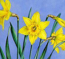 Yellow Daffodils Watercolor by Sarah Trett