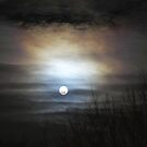 Moody Moon by photodug