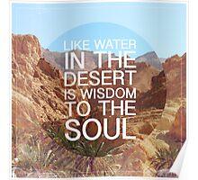 Desert Wisdom Poster