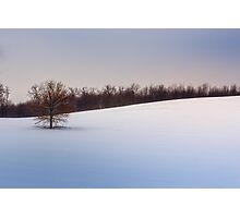 Winter Solace Photographic Print