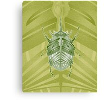 leaf bug Canvas Print