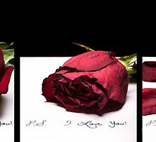 P.S. I love you - Tryptic by Robby Ticknor