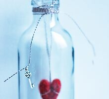 Heart in a bottle by Arina Borevich