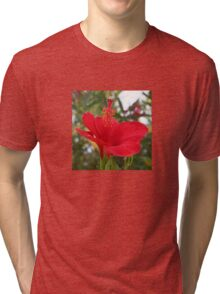 Soft Red Hibiscus With Natural Garden Background Tri-blend T-Shirt