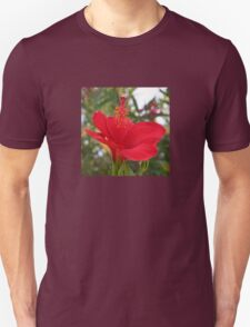 Soft Red Hibiscus With Natural Garden Background Unisex T-Shirt