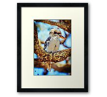 Hanging About... Framed Print