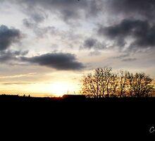 Coucher de soleil sur  le Zenith de Rouen by cherif Nidhal