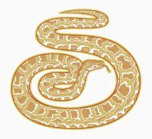 Burmese Python (Albino) by Yodeldog