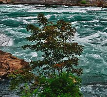 Niagara Gorge 2 by lmcarlos