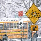 School day blizzard in New York City  by Alberto  DeJesus