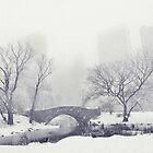 Winter in Central Park by Jessica Jenney